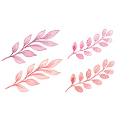 Pink watercolor branches vector