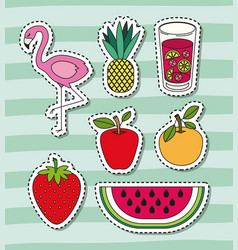 Tropical elements and fruits with beverage and vector