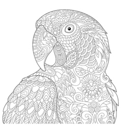 Zentangle stylized macaw vector