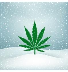 Hemp grows snow vector image