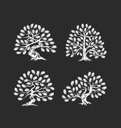 huge and sacred oak tree silhouette logo isolated vector image