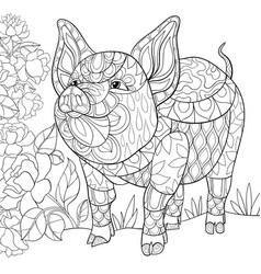 Adult coloring book page a cute pig on the floral vector