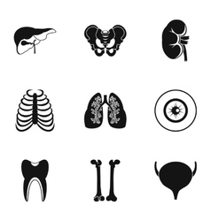 Bodies icons set simple style vector image