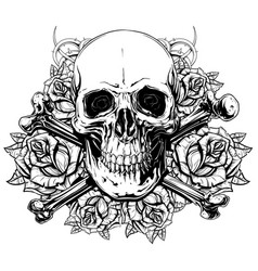 Graphic human skull with crossed bones and roses vector