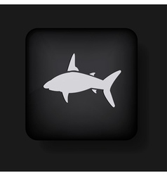 Shark icon vector image