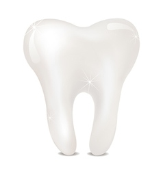Tooth on a white background isolated vector