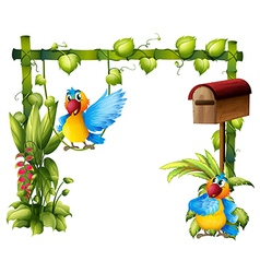 Two parrots with a wooden mailbox vector
