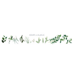 winter season designer foliage branches editable vector image