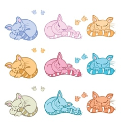 Sleeping cats vector image vector image