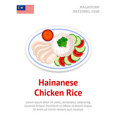 hainanese chicken rice traditional malaysian dish vector image