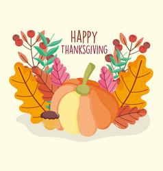 pumpkin acorn berry leaves foliage thanksgiving vector image