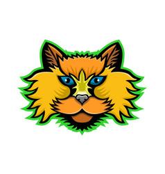 selkirk rex cat mascot vector image