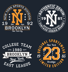 set new york graphic for t-shirt vector image