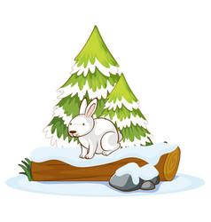 White bunny on wooden log vector