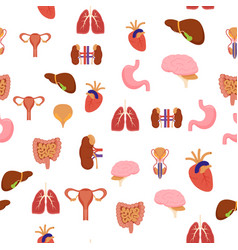 cartoon human internal organs background pattern vector image