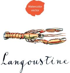 langoustine vector image