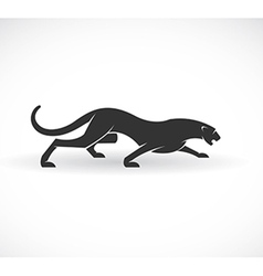 Panther vector image vector image