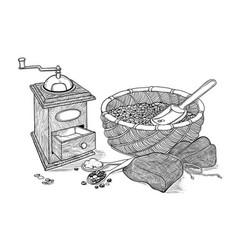 sketch drawing vintage coffee grinder vector image