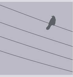 bird on a wire for design vector image
