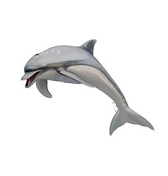 Dolphin from a splash watercolor colored vector