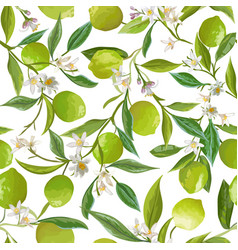 floral lime seamless pattern citrus fruits vector image
