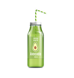 Fresh avocado juice bottle with label and green vector