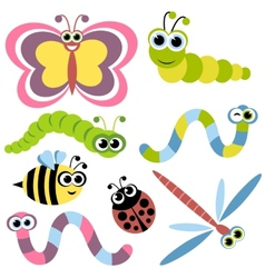 Set insects vector