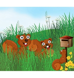 Three squirrels with a wooden mailbox vector image