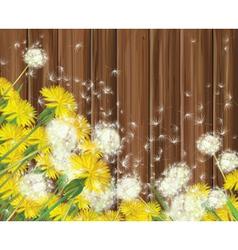 Spring flowers wood vector