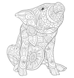 Adult coloring book page a cute pig image for vector