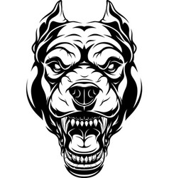 Ferocious pitbull dog head vector