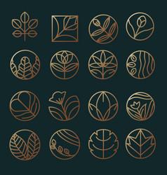 floral logo design template vector image