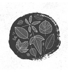 hand drawn ink circle and linear autumn vector image