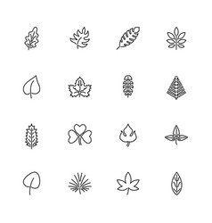 herb - flat line icons vector image