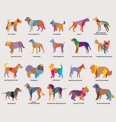 Set of colorful mosaic dogs silhouettes-4 vector