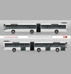 articulated bus mock-up vector image
