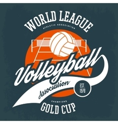 ball for volleyball in front field with net vector image