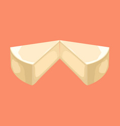 cheese cake slice vector image