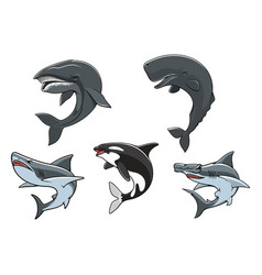 dangerous marine predators icon set vector image
