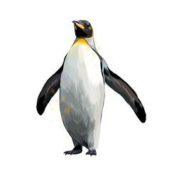 emperor penguin from a splash watercolor vector image