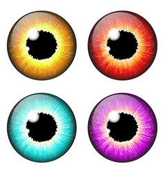 iris eye realistic set design isolated on white vector image