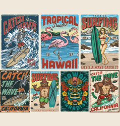 surfing and tropical vintage posters vector image