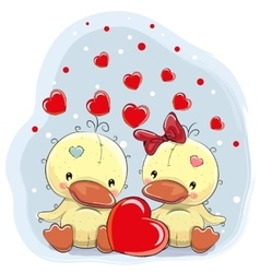 Two Cute Ducks vector image