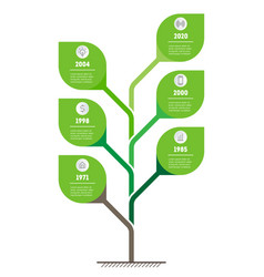 Vertical time line infographics tree vector