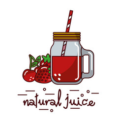 red fruits cherry strawberry natural juice glass vector image