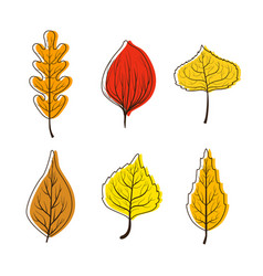 collection bright colorful autumn leaves from vector image