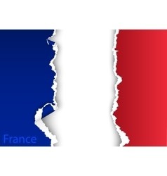 design flag france from torn papers with shadows vector image