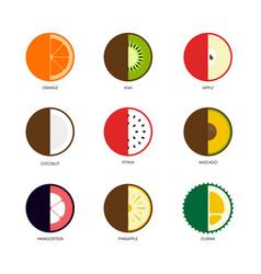 fruit icon set flat design isolated on white vector image