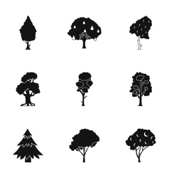 Kind of trees icons set simple style vector