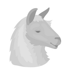 lama icon in monochrome style isolated on white vector image